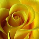 Kwiecień – podsumowanie